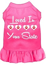 Loved in Alaska Screen Print Souvenir Dog Dress Bright Pink XS