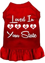 Loved in Alaska Screen Print Souvenir Dog Dress Red XS