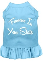 Famous in Connecticut Screen Print Souvenir Dog Dress Baby Blue XS