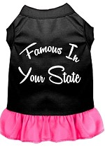 Famous in Connecticut Screen Print Souvenir Dog Dress Black with Bright Pink XS