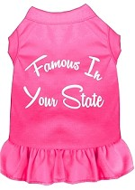Famous in Connecticut Screen Print Souvenir Dog Dress Bright Pink XS