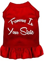 Famous in Connecticut Screen Print Souvenir Dog Dress Red XS