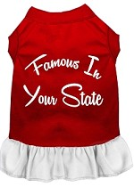 Famous in Connecticut Screen Print Souvenir Dog Dress Red with White XS