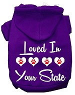 Loved In Alaska Screen Print Souvenir Dog Hoodie Purple XS