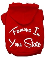Famous In Kansas Screen Print Souvenir Dog Hoodie Red SM