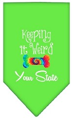 Keeping it Weird Connecticut Screen Print Souvenir Pet Bandana Lime Green Small