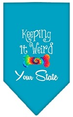 Keeping it Weird Connecticut Screen Print Souvenir Pet Bandana Turquoise Small