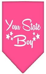North Dakota Boy Screen Print Souvenir Pet Bandana Bright Pink Small