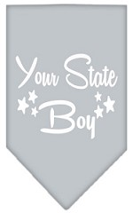 North Dakota Boy Screen Print Souvenir Pet Bandana Grey Small