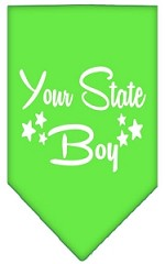 North Dakota Boy Screen Print Souvenir Pet Bandana Lime Green Small