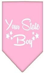 North Dakota Boy Screen Print Souvenir Pet Bandana Light Pink Small