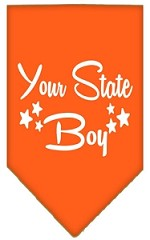 North Dakota Boy Screen Print Souvenir Pet Bandana Orange Small