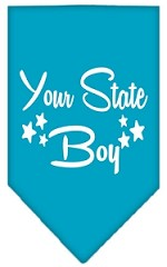 North Dakota Boy Screen Print Souvenir Pet Bandana Turquoise Small