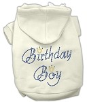 Birthday Boy Rhinestone Hoodie Cream XS