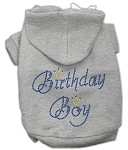 Birthday Boy Rhinestone Hoodie Grey XL