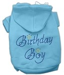 Birthday Boy Rhinestone Hoodie Baby Blue XL