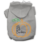 Lil Punkin Screenprint Hoodie Grey XS