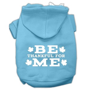 Be Thankful for Me Screen Print Pet Hoodies Baby Blue Size M (12)
