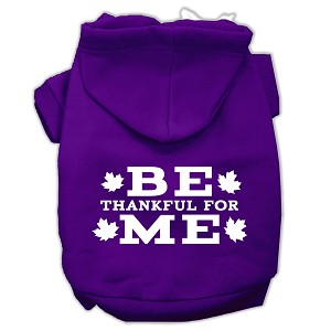 Be Thankful for Me Screen Print Pet Hoodies Purple Size XXXL(20)