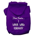 Dear Santa I Went with Naughty Screen Print Pet Hoodies Purple Size XS (8)