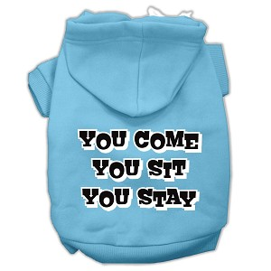 You Come, You Sit, You Stay Screen Print Pet Hoodies Baby Blue Size XL