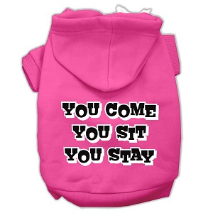 You Come, You Sit, You Stay Screen Print Pet Hoodies Bright Pink Size S (10)
