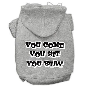 You Come, You Sit, You Stay Screen Print Pet Hoodies Grey Size XL