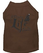 A Pirate's Life Embroidered Dog Shirt Brown Sm (10)