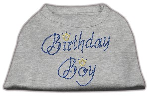 Birthday Boy Rhinestone Shirts Grey XS