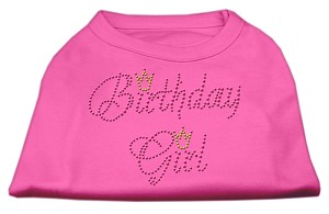 Birthday Girl Rhinestone Shirt Bright Pink XL