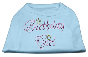 Birthday Girl Rhinestone Shirt Baby Blue XL