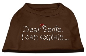 Dear Santa I Can Explain Rhinestone Shirts Brown XS (8)