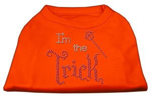 I'm the Trick Rhinestone Dog Shirt Orange Sm (10)