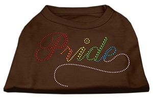 Rainbow Pride Rhinestone Shirts Brown Med (12)