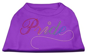 Rainbow Pride Rhinestone Shirts Purple XL (16)