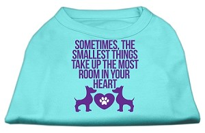 Smallest Things Screen Print Dog Shirt Aqua Lg (14)