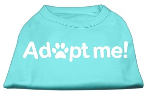 Adopt Me Screen Print Shirt Aqua Sm (10)