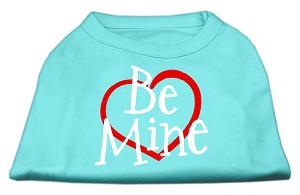 Be Mine Screen Print Shirt Aqua Lg (14)