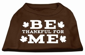 Be Thankful for Me Screen Print Shirt Brown Sm