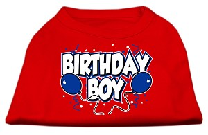 Birthday Boy Screen Print Shirts Red XS