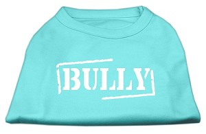 Bully Screen Printed Shirt Aqua XXL (18)