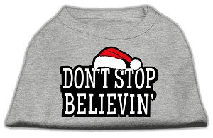 Don't Stop Believin' Screenprint Shirts Grey XL (16)