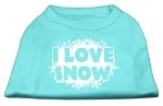 I Love Snow Screenprint Shirts Aqua XS