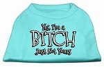 Yes Im a Bitch Just not Yours Screen Print Shirt Aqua Sm (10)