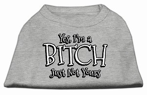 Yes Im a Bitch Just not Yours Screen Print Shirt Grey Sm (10)