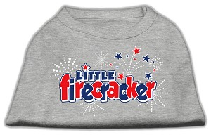 Little Firecracker Screen Print Shirts Grey S (10)