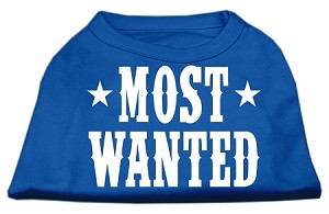Most Wanted Screen Print Shirt Blue Sm (10)