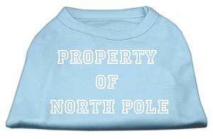 Property of North Pole Screen Print Shirts Baby Blue XL (16)