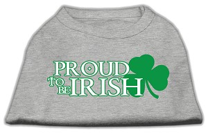 Proud to be Irish Screen Print Shirt Grey XL (16)