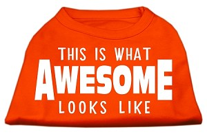 This is What Awesome Looks Like Dog Shirt Orange Med (12)